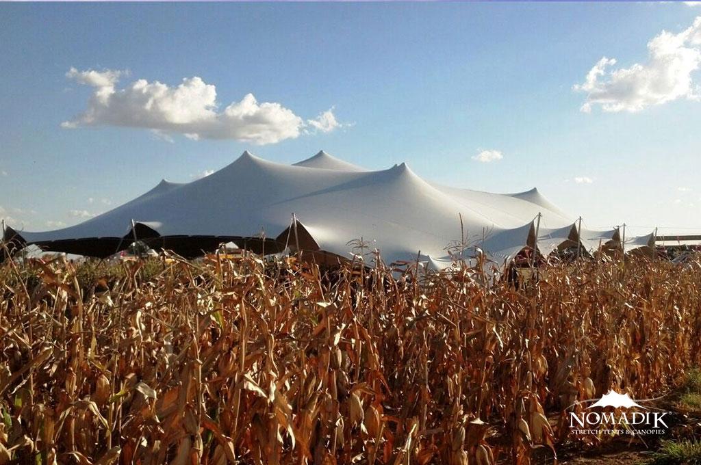 Client testimonials & Nomadik Stretch Tents u0026 Canopies